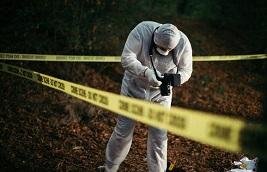 crime statistics missouri murder homicide